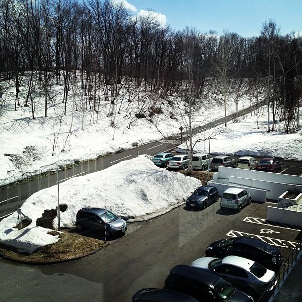 週末の雨でかなりボリューム感がなくなったけど、まだまだ雪が多いキャンパス